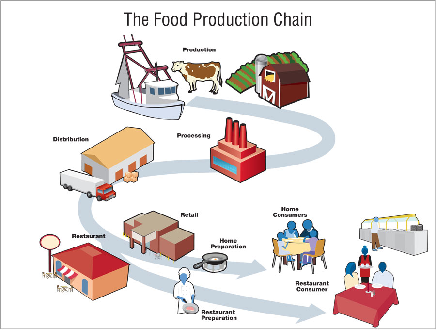 foodsupplychain